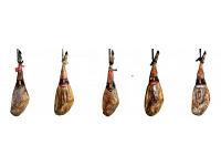 Which are the differences among percentages of iberian breed in hams?